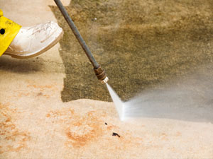Chicago Janitorial Floor Refinishing Carpet And Window Cleaning